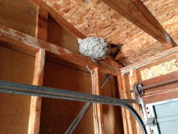 Garage bees! Actually they were gone and now, so is this nest!